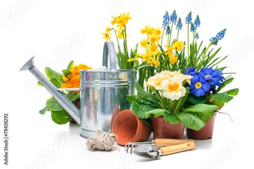 Leinwanddruck Bild Frühling, Blumen, Gartenarbeit