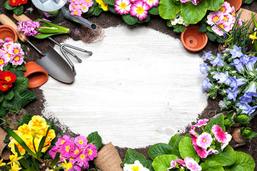 Frame of spring flower and gardening tools