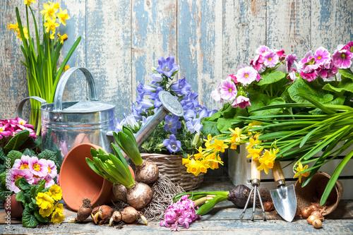 canvas print picture Frühling, Blumen, Gartenarbeit