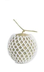 Net foam  wrap Melon on white background