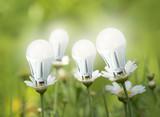 LED light bulbs like flowers - 78441235