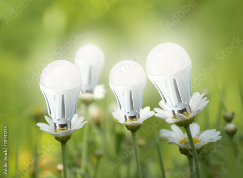 LED light bulbs like flowers - 78441235