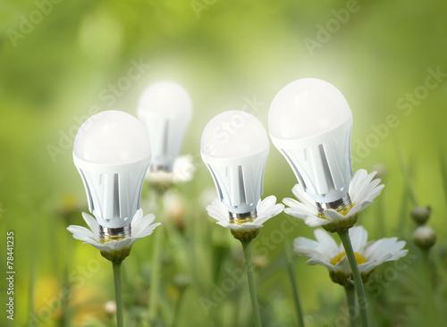 Leinwandbild Motiv LED light bulbs like flowers