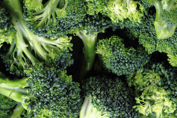 fresh green broccoli as food background