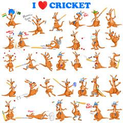 Kangaroo playing cricket