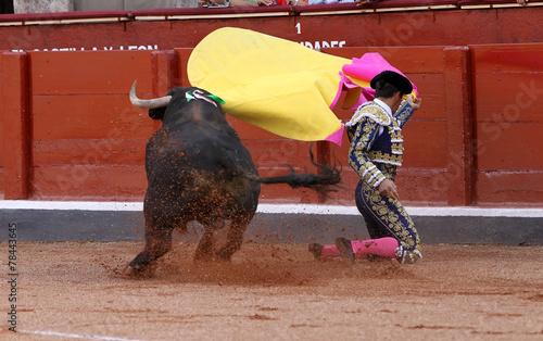 Leinwanddruck Bild torero