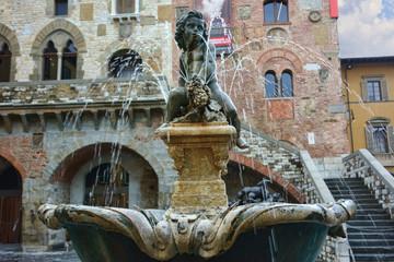 Bacchino Fountain In Prato