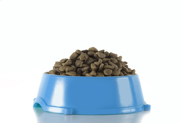 Dog food in blue bowl, isolated, white background