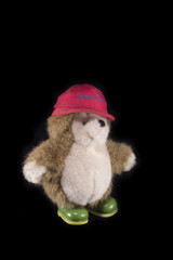 Teddy bear with red cap and green boots