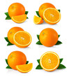 canvas print picture - Set of ripe orange fruits with leaves and slices isolated