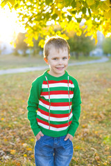 boy five years in a bright sweater outdoors in autumn