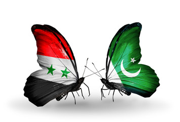 Two butterflies with flags Syria and Pakistan
