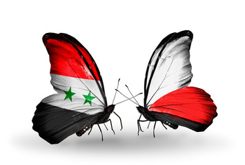 Two butterflies with flags Syria and Poland