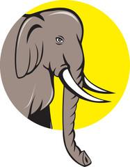 Indian Elephant Head Cartoon