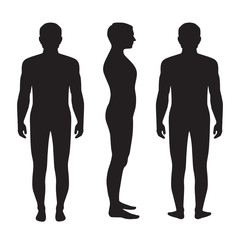 human body anatomy, vector man silhouette, front back side