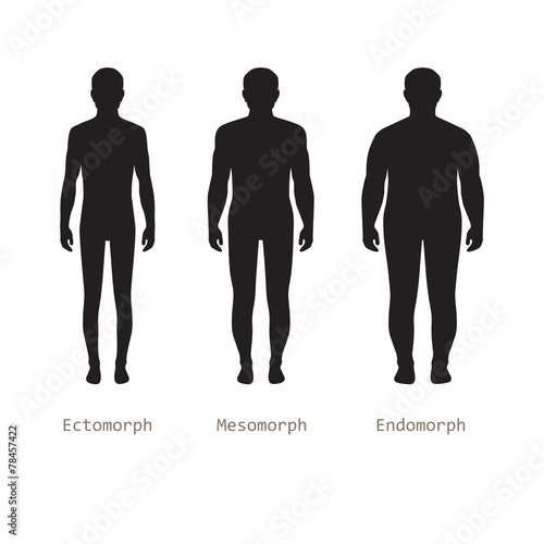 body male types, silhouette man naked figure, front human body - 78457422