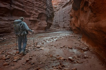 USA, Utah, Moab, Hiker in Professor Creek Narrows
