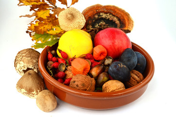 Decoration of autumn fruits
