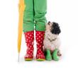 Hund und Menschenbeine in Gummistiefeln