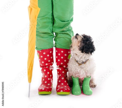 canvas print picture Hund und Menschenbeine in Gummistiefeln