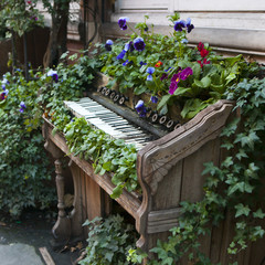 old piano used instead of beds, as a decoration of the park.