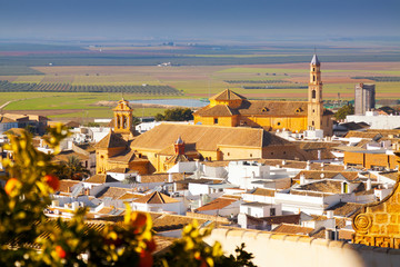 General view of andalucian town.  Osuna