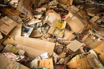 Cardboard Waste