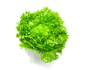 lettuce salad fragment on a white background