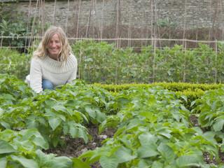 Portrait of woman gardening with potato plants