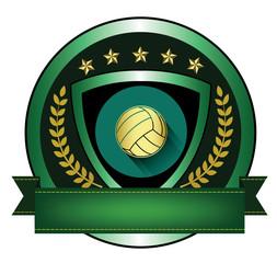 Illustration of Volleyball logo