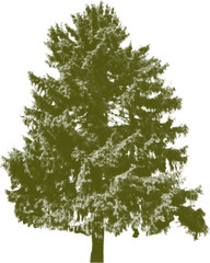 green fir tree silhouette from dots isolated on white