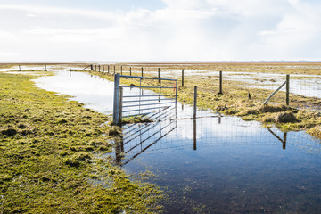 Crooked steel gate in a flooded nature area