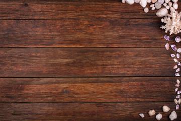 wooden background seashells, summer sea vacation concept