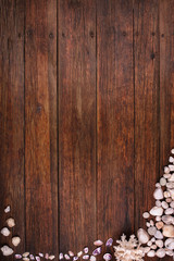 wooden deck background seashells, summer sea vacation concept