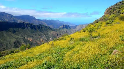 High mountain landscape in spring, Gran Canaria, Spain