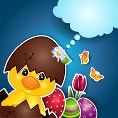 Chick egg blue background