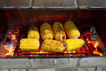 Grilled corns (corn, cob) with red charcoal