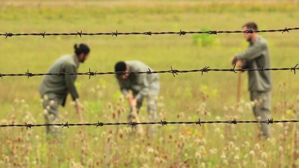 View through the wire,prisoners hard work in the field
