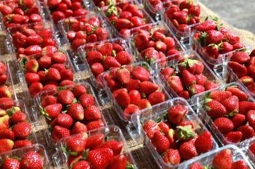 market strawberries