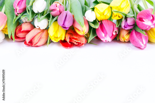 canvas print picture Bunte Tulpen