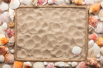 Beautiful frame of rope and sea shells on the sand