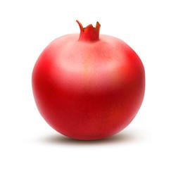 Juicy pomegranate. Vector
