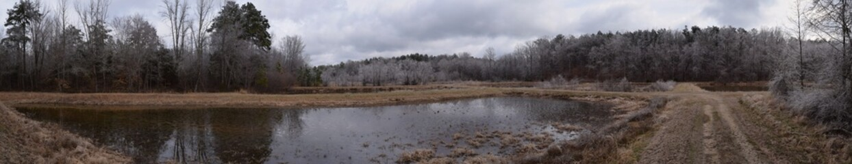 Winter at the University of Mississippi Field Station