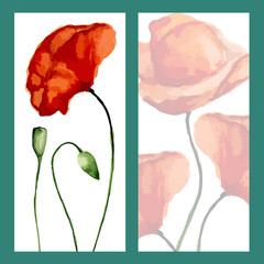 Greeting card poppies