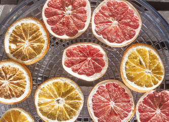 Drying grapefruit and orange