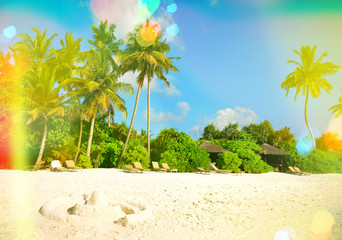 Sand beach with palm trees. Sunny blue sky with light leaks and