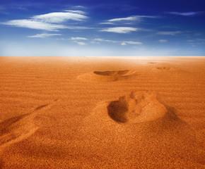 Footprints on sand dune, Sahara Desert