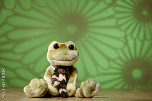 canvas print picture frosch