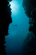 Blue Water and Reef Crevice