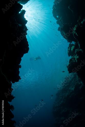 Tuinposter Koraalriffen Blue Water and Reef Crevice